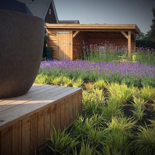 Overkapping en vasten planten border bij T Suyt in Waddinxveen
