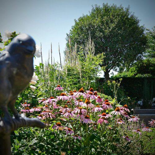 Tuinbeelden - Buitenkunst - Vogel