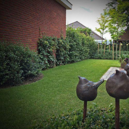 Tuinbeelden - Buitenkunst - diverse vogels