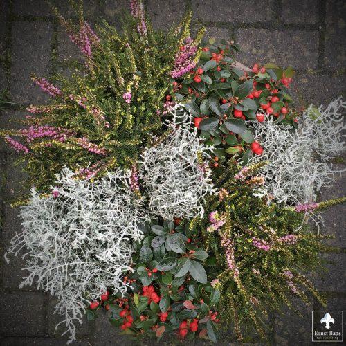 Mix van beplanting met kerstsfeer