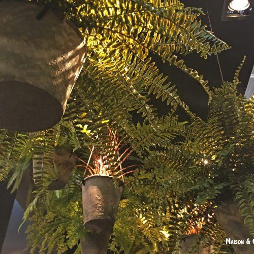 Tuindecoratie tijdens de beurs - Hangende planten